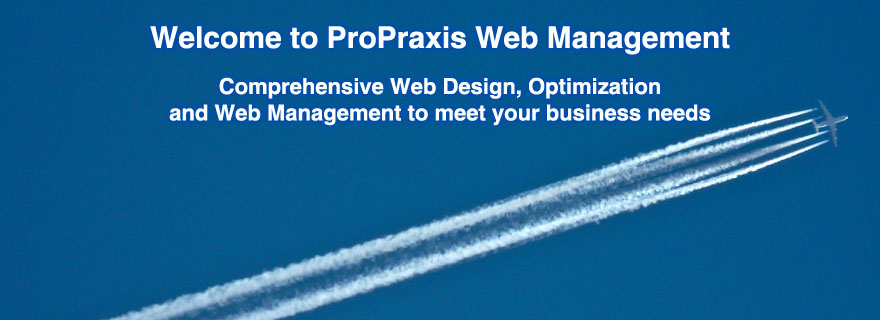 ProPraxis Web Management Leicester